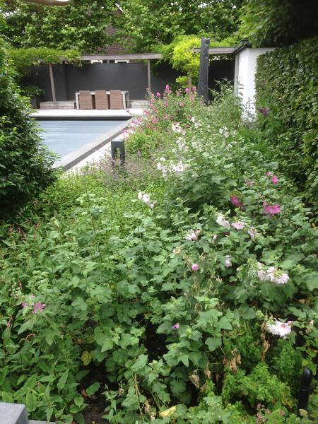Tuin van het Jaar 2016